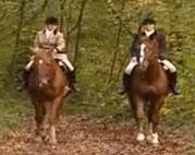 Lesbensex im Pferdestall