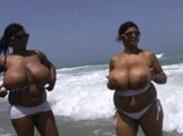 Zwei dickbusige, lesbische, schwarze Prachtweiber
